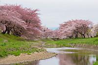 Osegawa