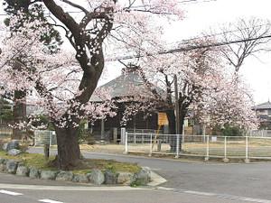 Shizukagozen