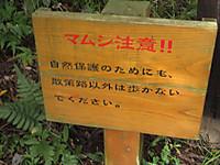 Img_5725_r