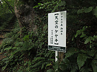 Img_5730_r