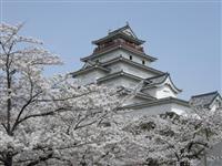 Tsurugajyo