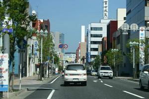 Sakuradori2