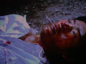 Gpan 私が好きだった刑事ドラマの殉職者: 時遊人SUZUのひとり言